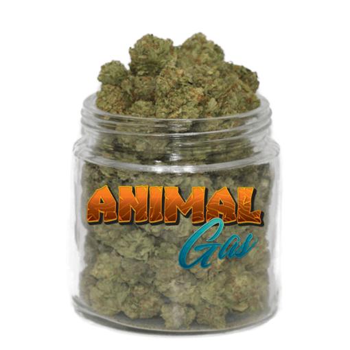 Animal Gas (AAAA)