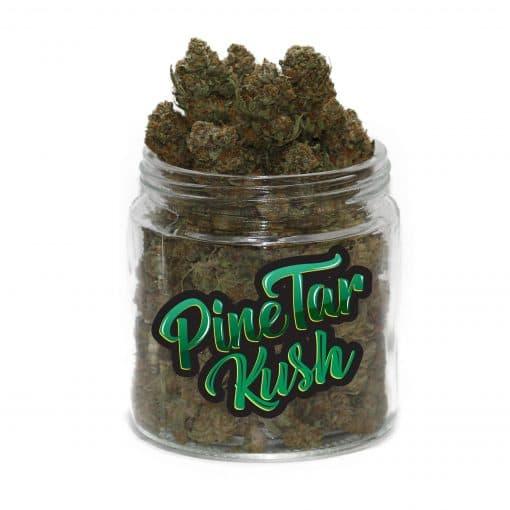 Pine Tar Kush