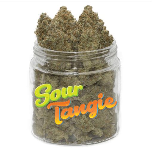 Sour Tangie (AAAA)