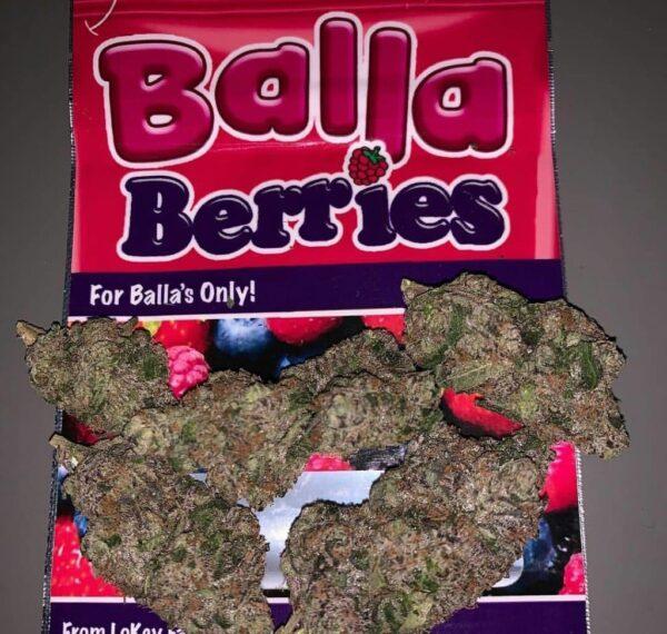 balla-berries online